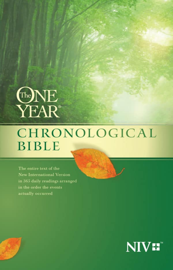 Chronological Bible Study Week 41 Image